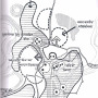 chanderi development plan map