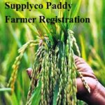 Supplyco Paddy Farmer Registration